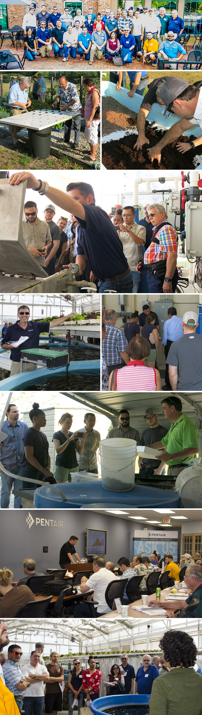 Aquaponics Workshop Recap