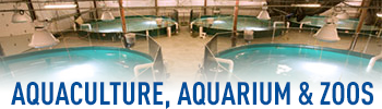 UV Aquaculture, Aquarium & Zoos