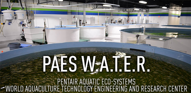 PAES WATER