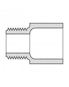 Male Adapter (MNPT x Slip)