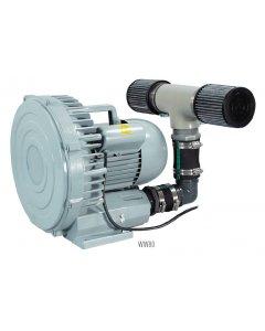 Whitewater® Regenerative Blowers