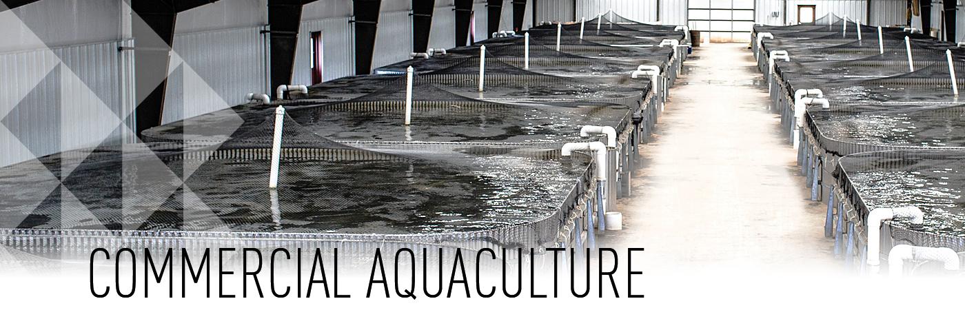 Commercial Aquaculture