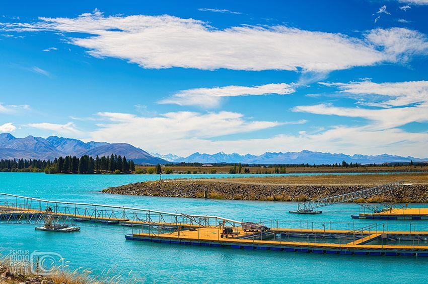 New Zealand Aquaculture