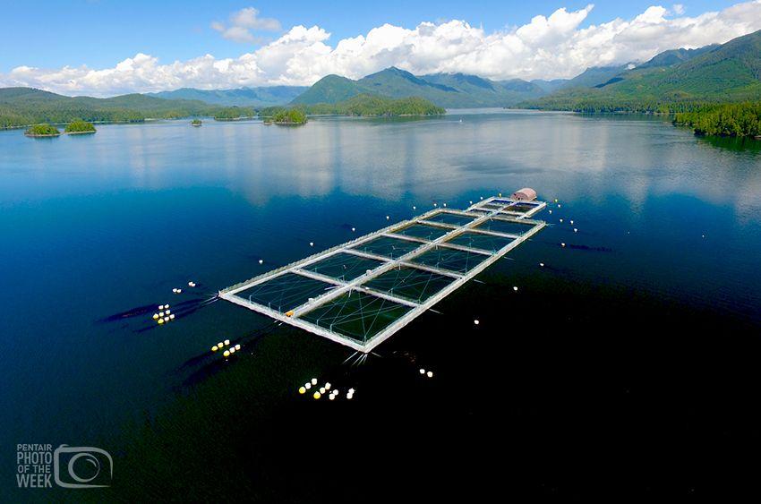 Pentair AES - Aquaculture Western Canada