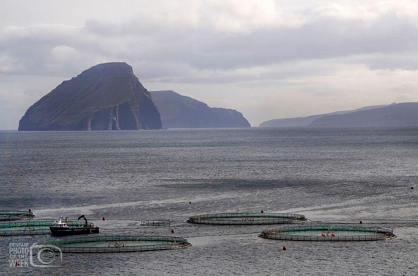Fish Farming - Faroe Islands