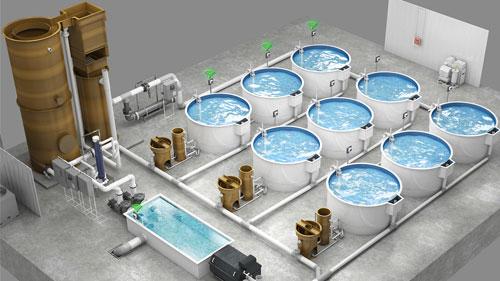 Taller De Tecnología En Sistemas De Recirculación En Acuicultura (SRA)