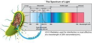 Spectrum-of-Light-Small-Chart