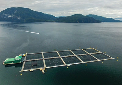 Phillips Arm salmon farm, operated by Marine Harvest in British Columbia, Canada.